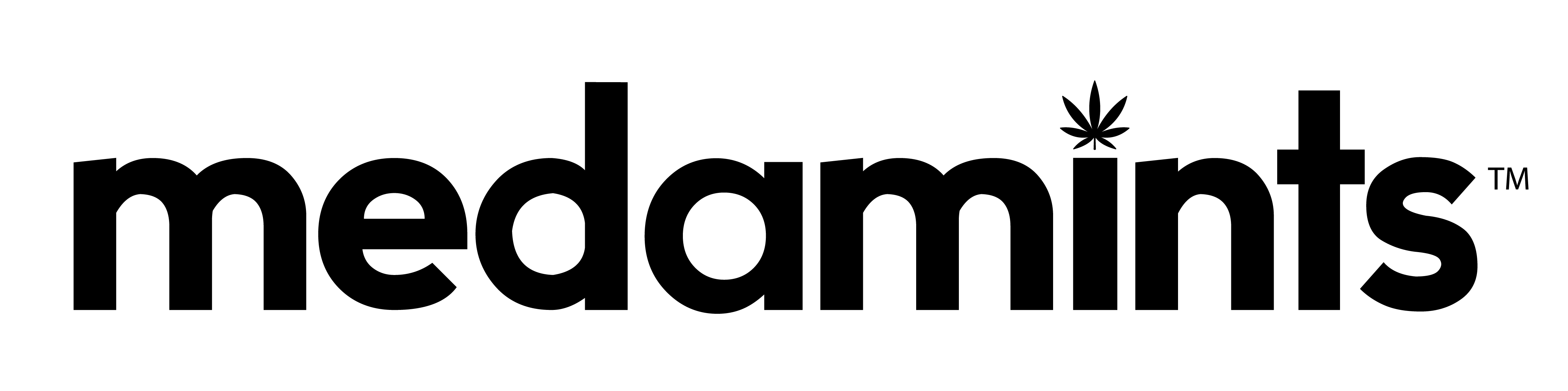 2017-medamints-logo-black-01