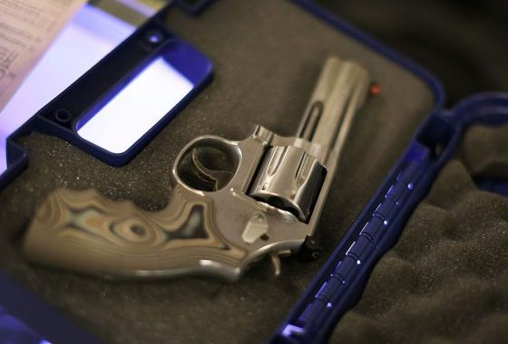 Delaware Police Officials Seek To Firm Up Gun Ban, Want Weed Use Noted On Driver's Licenses