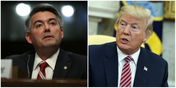 "Donald Trump Would ""probably"" Support Legalizing Colorado's Marijuana Industry — Through Bid By Cory Gardner And Elizabeth Warren"