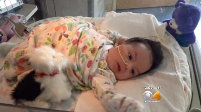 Epileptic Baby Treated With Hemp Oil At Childrens Hospital Inc Olorado