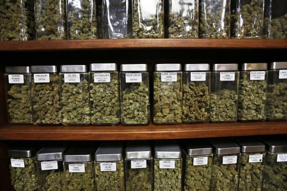 In Tight Vote, Longmont, Colorado Lifts Town's Pot Shops Ban