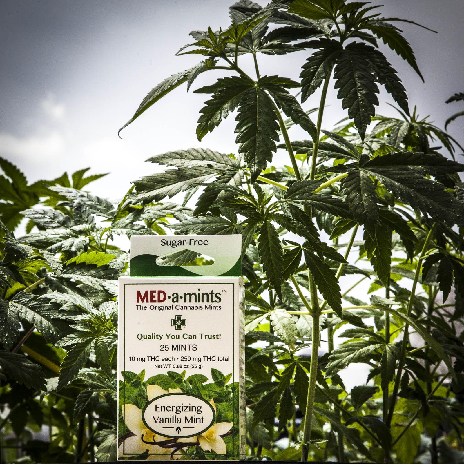 medamints-potent-thc-cannabis-marijuana-mints-024