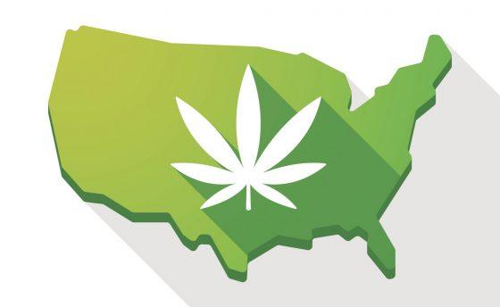 where-to-buy-medamints-marijuana-mints