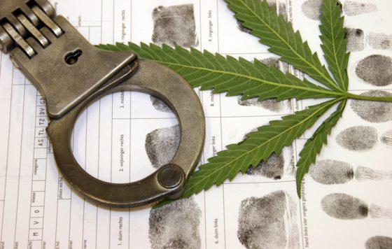 Albuquerque City Council Votes To Decriminalize Marijuana