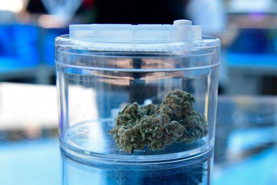 Coding And Cannabis: Santa Clara County To Expunge Thousands Of Marijuana Convictions