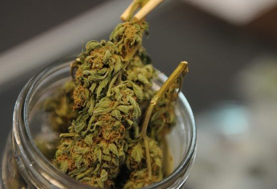 First-in-Colorado Medical Marijuana Delivery Coming To Boulder This Spring