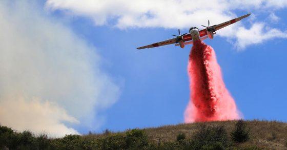 Largest California Wildfire Threatens Marijuana Growing Area