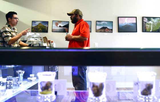 Montana MMJ Enrollment Up, But Producers On Hold For Testing Regs