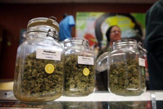 Local Police Dub California Marijuana Legalization As 'Trainwreck,' Urging No Vote On Prop. 64
