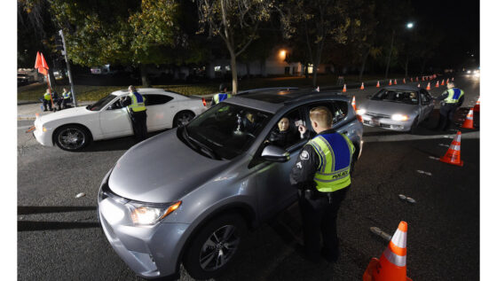 Report: California Needs To Better Track And Test Drugged Drivers
