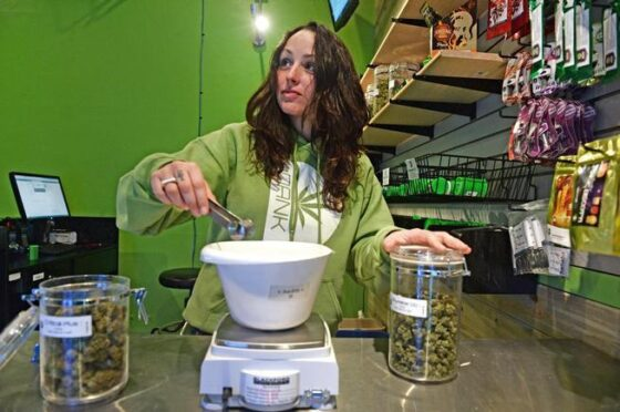 Staff Favorites: DANK Dispensary Is The Only Place I'm Visiting During 420 Week